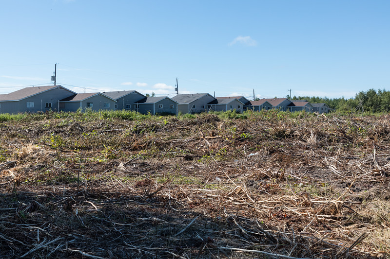Backs of houses on Moose Drive across newly cleared land.