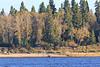 People enjoying a warm fall afternoon on Charles Island.