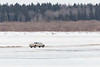 Truck heading to Moose Factory across the Moose River ice 2017 April 3rd.