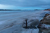 Moose River shoreline looking up the river from Two Bay docks 535 am 2017 April 28th. High tide.