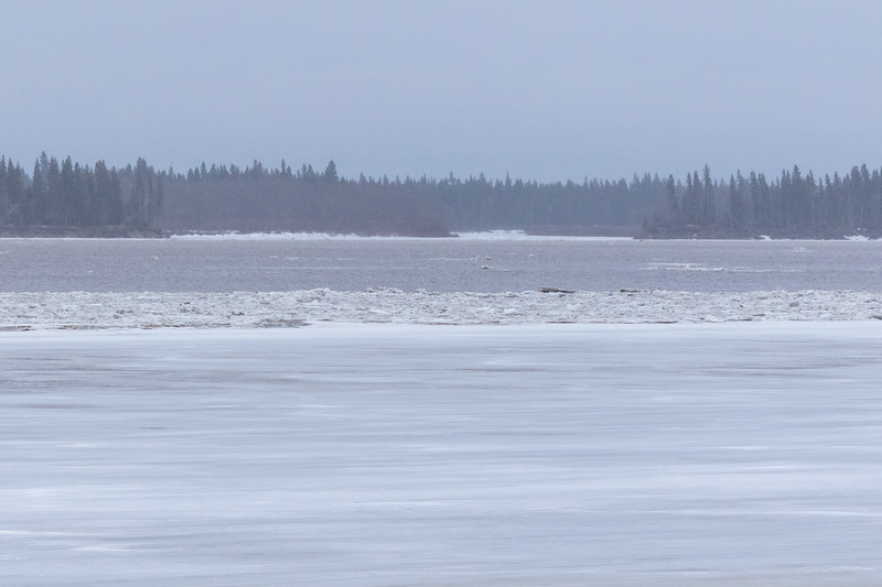 Ice sheet then open water. Looking up and across the river.