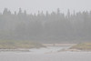 Looking across the river in the rain 2017 September 17th.