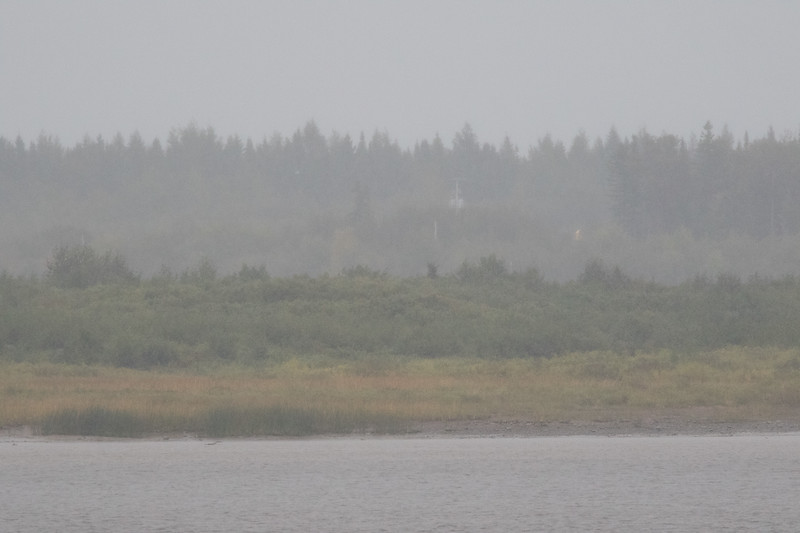 Moose Factory Island across the river in the rain. 2017 September 17th.
