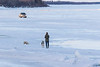 Womand with dogs and ruck on the ice of the Moose River.