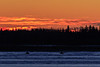 Two snowmobiles on the Moose River just before sunrise 2017 November 27th.
