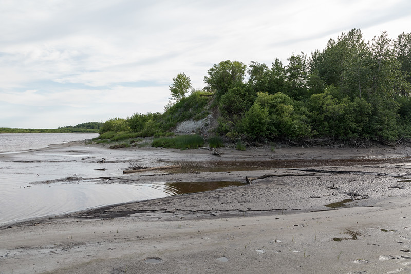Mouth of Store Creek at low tide.