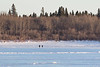 People walking across the Moose River 2017 March 31st.
