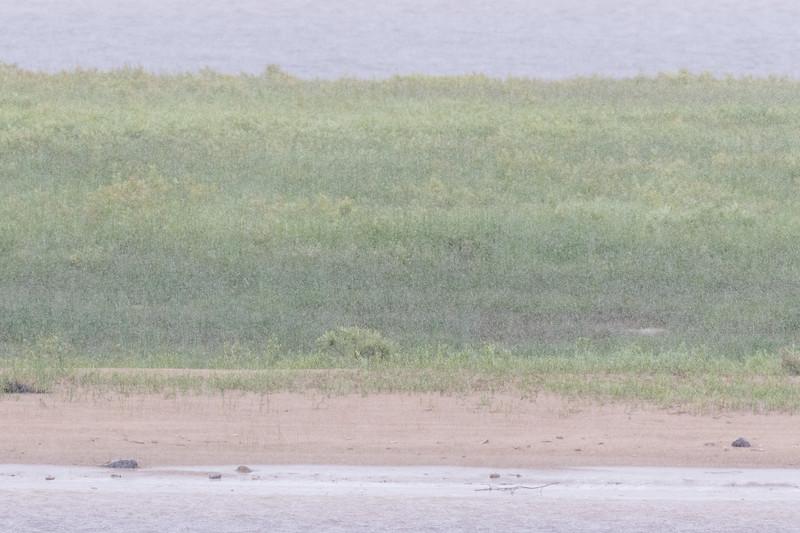 Sandbar in the rain.