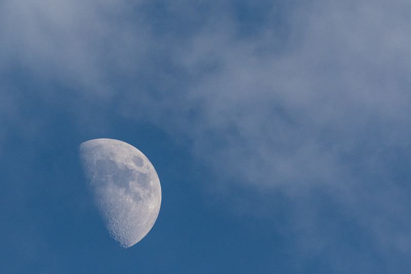 Heading for the clouds. Moon in late afternoon sky.