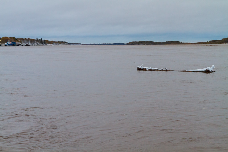 Log with snow floating down the Moose River.