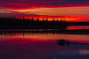 Taxi boat heading to Moose Factory. Before sunrise, purple sky and water. Butler Island in the background.
