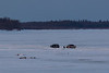 Two vehicles on the Moose River at Moosonee 2018 April 26th.