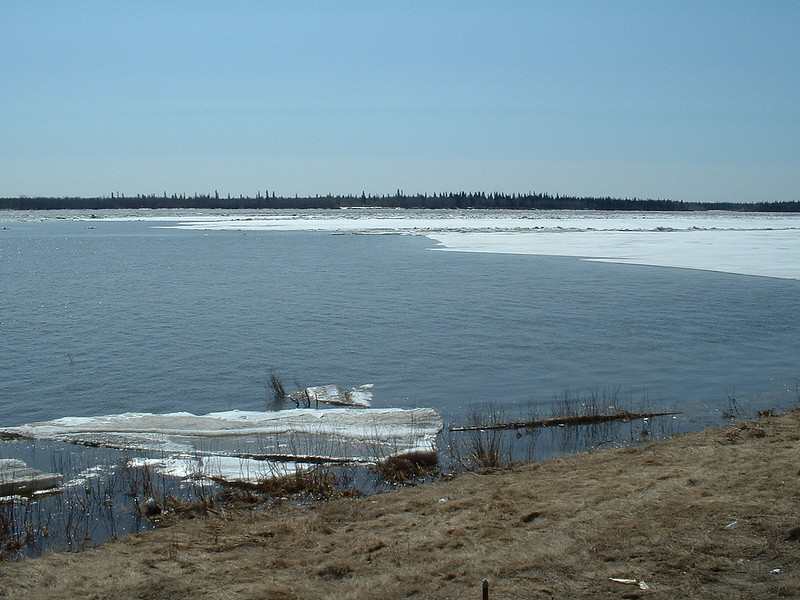 Lots of open water looking across the Moose River 2003 May 6 1049 am