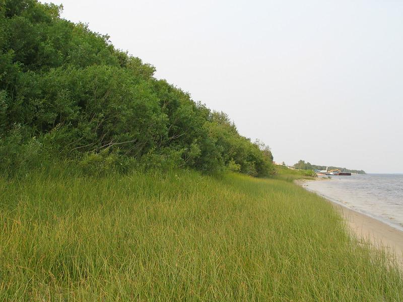 Moosonee River shoreline looking towards barge docks.