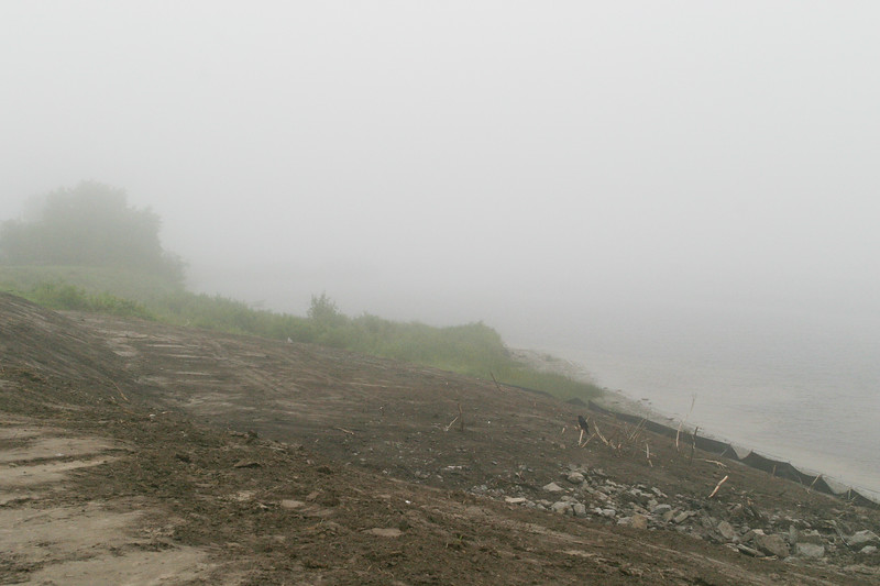 Edge of the Moose River on a foggy day. Shoreline work underway. Raven sitting on stubble. Geobarrier set up near water.