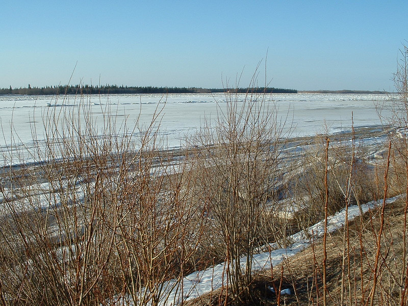 Looking up the Moose River ice 2003 May 6