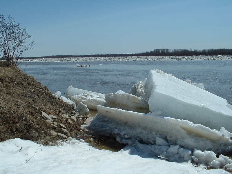 Thick pieces of ice along the shore of the Moose River. 2003 May 6