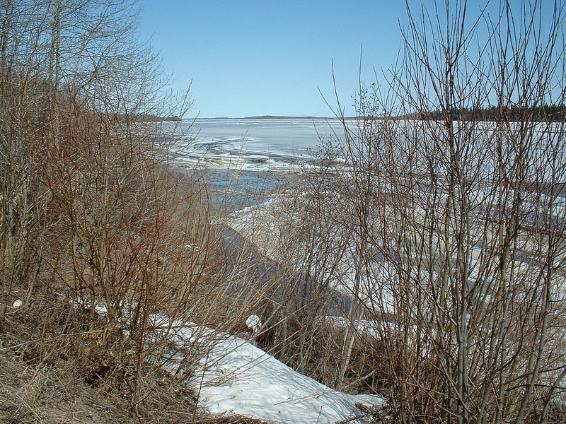 Looking down the Moose River 2003 May 5