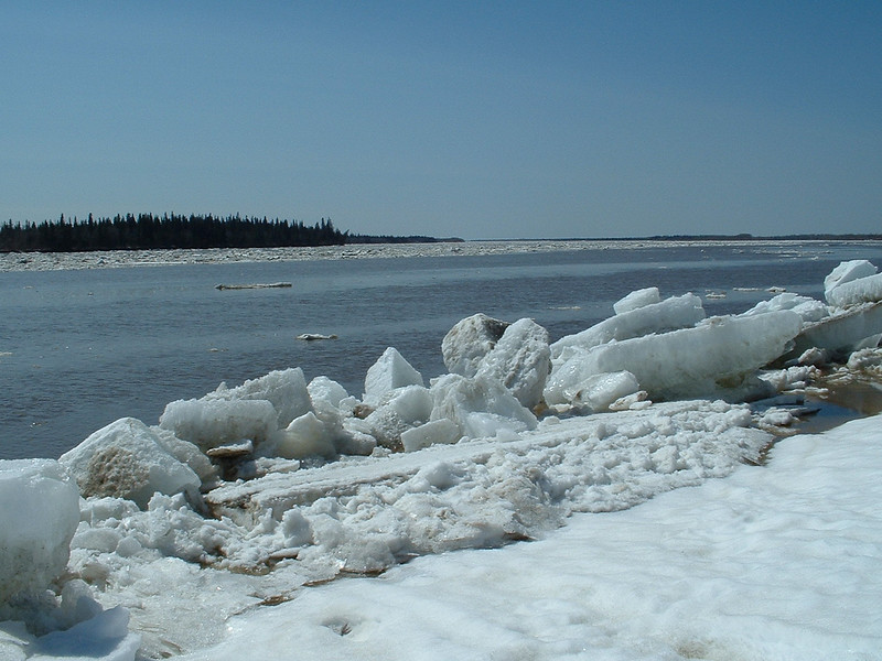 Ice on the Moose River shoreline 2003 May 6
