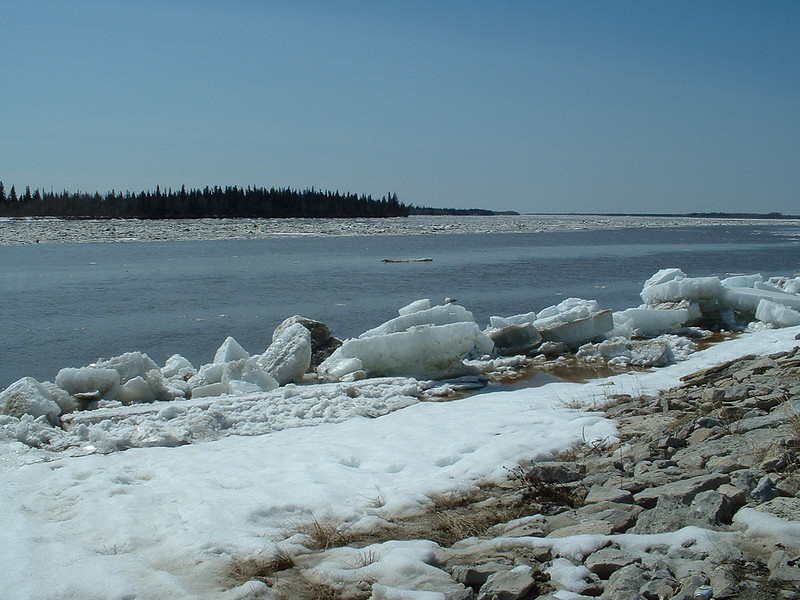 Ice along the edge of the Moose River near the mouth of Store Creek in Moosonee. 2003 May 6