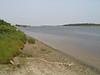 Moose River shoreline looking down river towards barge docks 2003 August 19