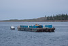 Small tug Harricana River towing barge down the Moose River 2006 May 17th.