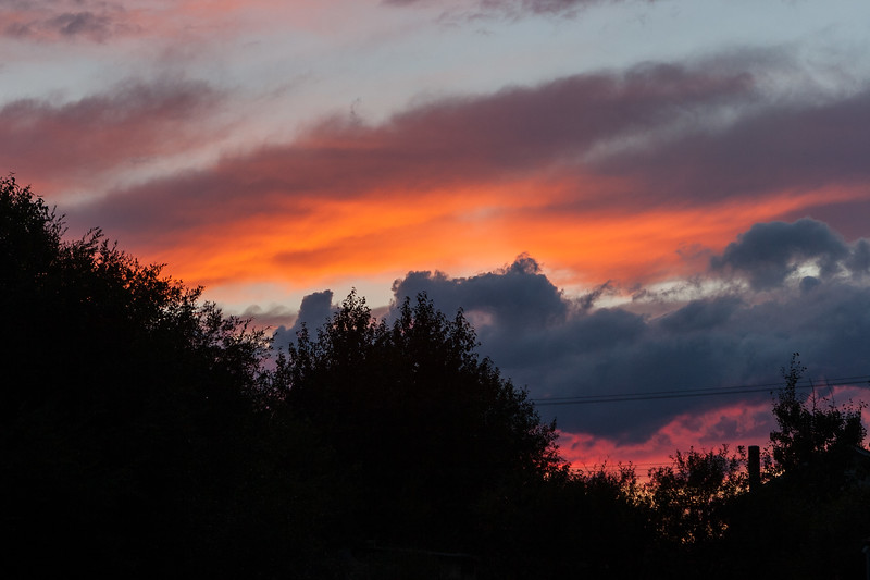 Sunset over trees and power lines. Moosonee 2005 August 10