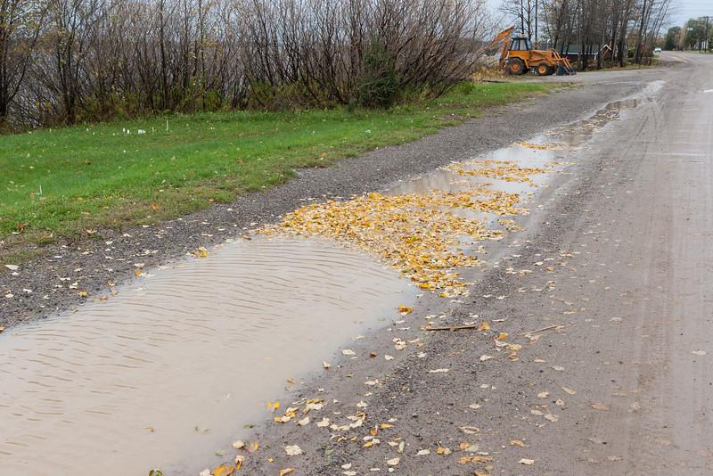 Water along Revillon Road.