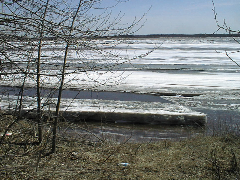 View across floating ice in the Moose River 2002 May 2.