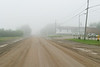Looking up Revillon Road on a foggy morning.