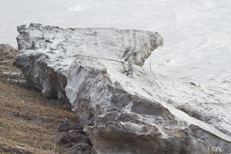 Ice floes on shore
