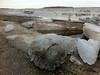 Ice on top of walkway at public docks in Moosonee