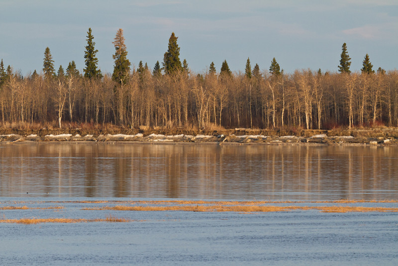 Charles Island with sandbar in foreground. Note ice along the shore 2011 May 10th