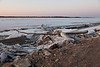 Ice and log along the Moose River shoreline
