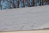 Shingle edges under light snow