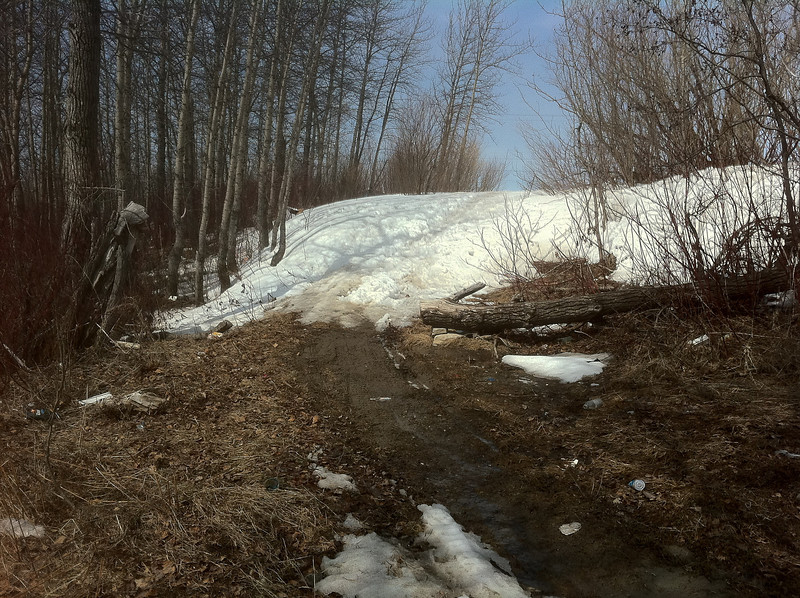 Pile of snow on a path beside Store Creek 2011 April 21