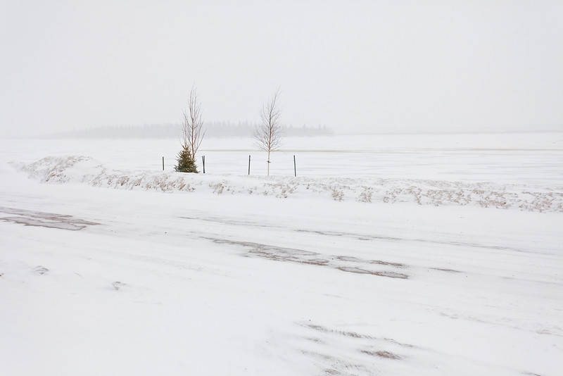 View towards Butler Island with Revillon Road in foreground during snow storm 2011 April 17th