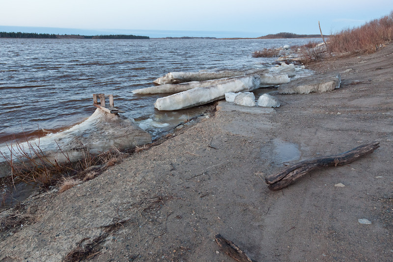 Ice and debris at public docks inMoosone 2011 May 2nd