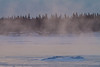 A cold morning on the Moose River. Mist and blowing snow.