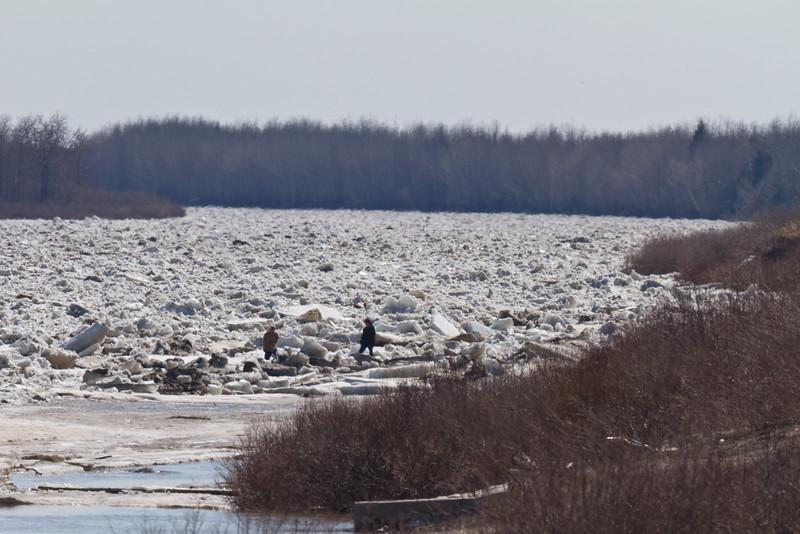 People walking on the ice near McCauley's Hill