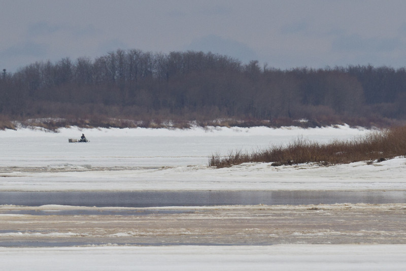 Snowmobile on the Moose River 2011 April 23rd