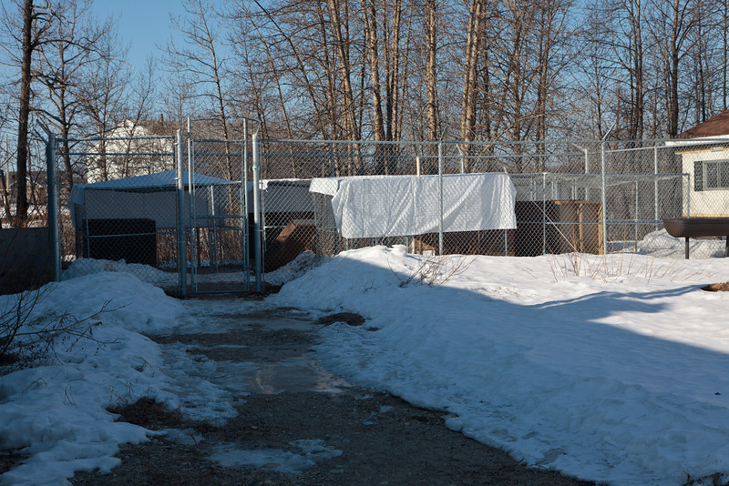Animal cages behind fire department