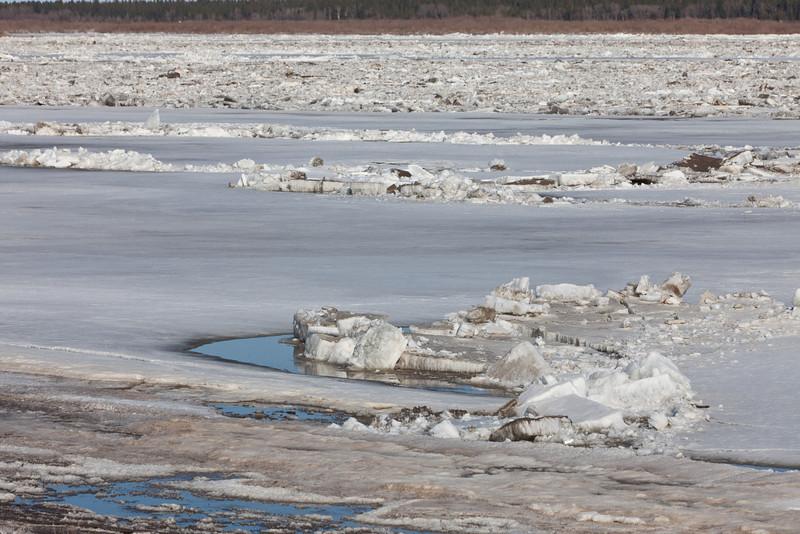 Fingers of floating ice cut into the ice sheet near the Moosonee shoreline