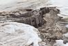 Tracks emerging from the ice near public docks