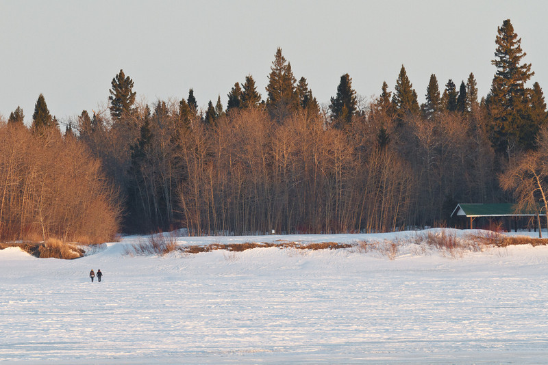 Two walkers approaching Charles Island