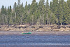 Canoe on the Moose River
