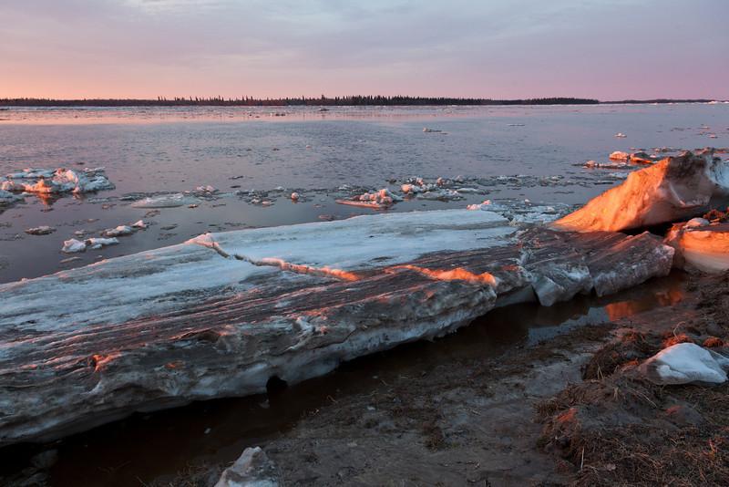 Ice sheet by shoreline.