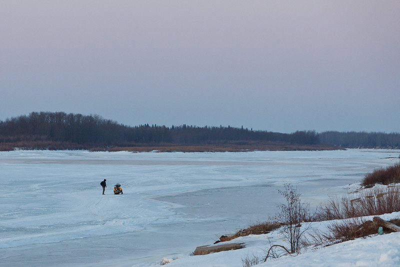 Perhaps wondering if it is safe to cross the tidemark along the shore of the Moose River 2011 April 14th