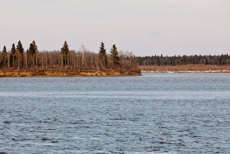 South end of Butler Island