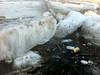 Ice chunks close to shore shove debris in.